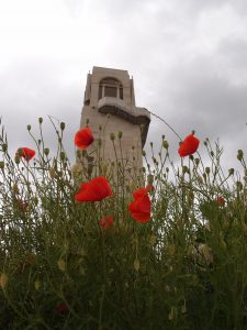 Poppies at the Australian National Memorial, Somme battlefield