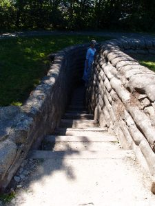 WanderingWounded.com   Yorkshire Trench - steps from above into the narrow trench